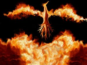 phoenixt_jpg n