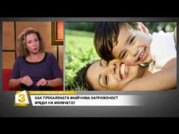 Как майчината грижа определя живота и поведението на сина?
